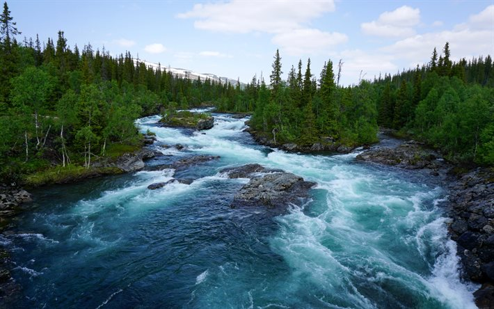 thumb2-spring-mountain-river-norway-forest-river